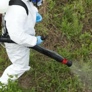 mosquito spray professional